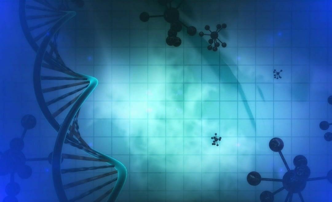 Votre ADN Vous Enseigne