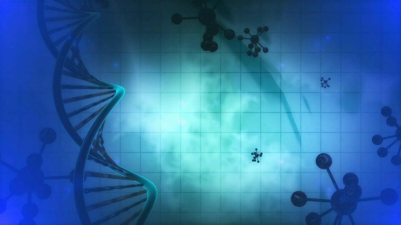 L'ADN Vous Enseigne
